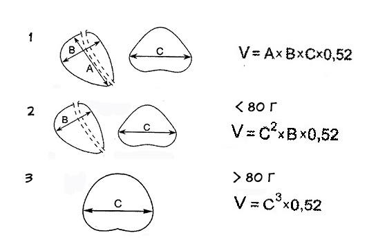 Формула расчета объема предстательной железы