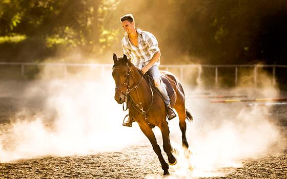 Мужчина верхом на лошади
